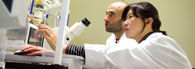 Бакалавр в области биомедицинской инженерии